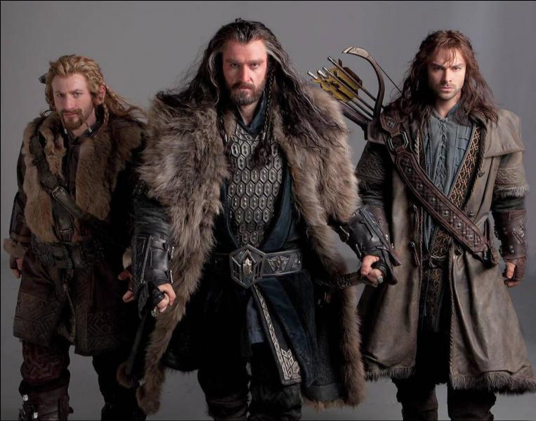 Que partent faire Thorin, Kili, Fili et Dwalin ?