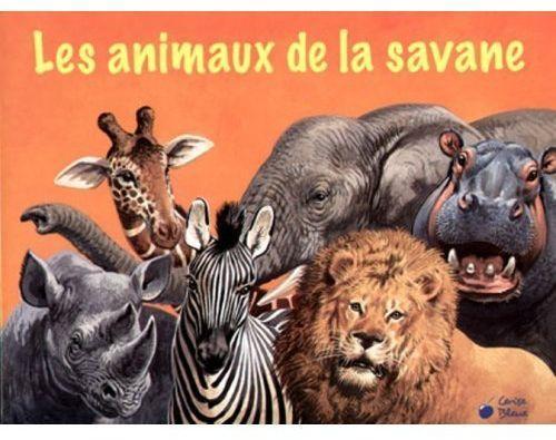 Quizz les animaux de la savane quiz animaux photos sauvages - Felin de la savane ...