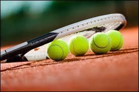 Au tennis, il y a cinq tournois de Grand Chelem.