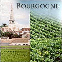 La Bourgogne est majoritairement spécialisée en :