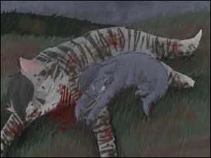 Dans une bataille, Fleur de Lune est tuée. Contre quel clan ?( Dans le livre : La Prophétie d'Etoile Bleue )