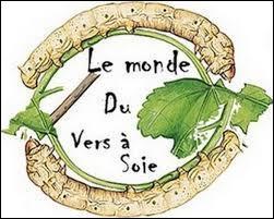 """C'est Pasteur qui sauva les élevages des vers à soie du sud de la France ravagés, au 19 e siècle, par une maladie appelée la """"pébrine""""."""