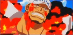 One Piece - Marine après l'ellipse