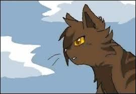 Quel est le nom de chaton de Griffe de Ronce ?
