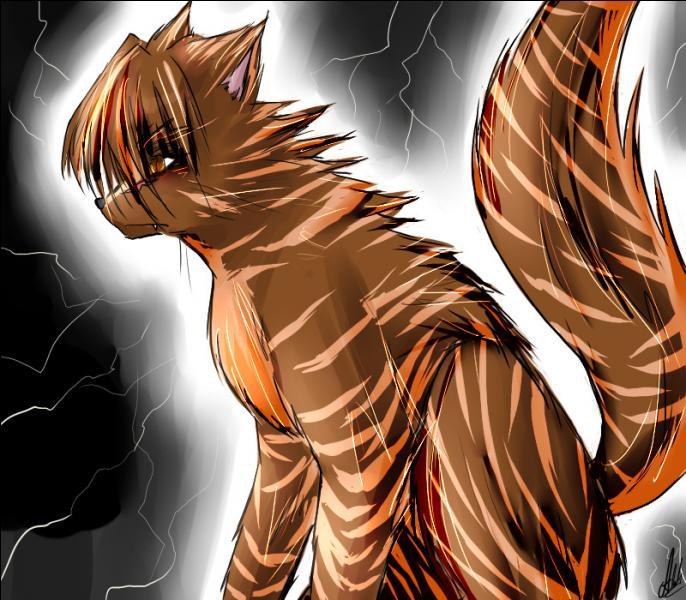 Quel est le chat qui meurt à cause de Griffe de Tigre, dans le livre IV (4) ?