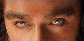 A qui appartient ces beaux yeux ?
