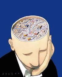 Muscler votre cerveau avec de la culture générale !