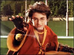 Quel poste Vicky Frobisher désira-t-elle occuper dans l'équipe de Quidditch de Gryffondor ?