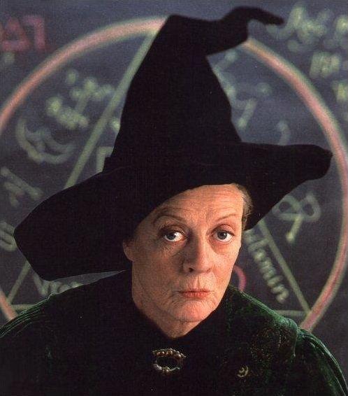 Harry Potter et ses professeurs