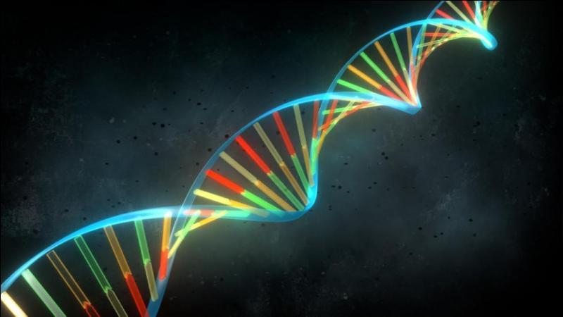 L'ADN aide à résoudre de plus en plus d'affaires criminelles. Quelles sont les informations encore exploitables 20 à 30 ans après ?