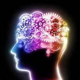 Le cerveau c'est bien, mais l'intelligence c'est mieux !