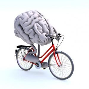 Le cerveau, un organe à connaître !