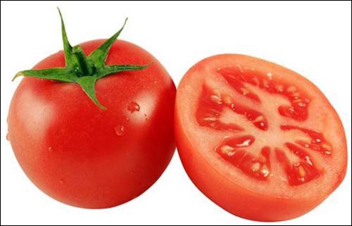Comment la tomate pousse-t-elle ?