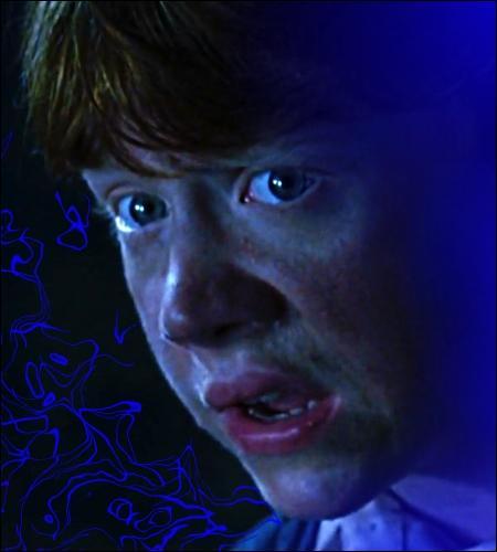 Combien de points Ron Weasley gagne-t-il pour son escapade réussie dans la Chambre des Secrets ?