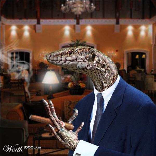 Attention, ce reptile fait penser à un lézard, mais il porte un nom différent, compte bien les lettres !