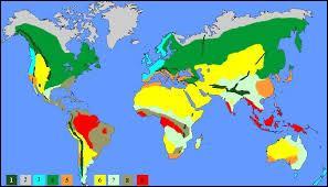 Parmi ces types de climat, lequel n'existe pas ?
