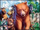 Comment se nomme le jeune indien transformé en ours dans le film 'Frères des ours' ?