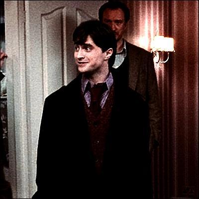 Jeu n°1 : les sept Potter, qui sont-ils ? Repérez le personnage à l'aide de la description. Ma joie de vivre est en demi-teinte depuis que ma moitié m'a quittée... Qui suis-je ?