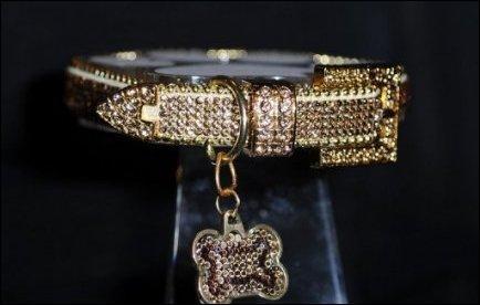 A qui ce collier d'or a-t-il été décerné en 2012 ?