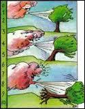 L'échelle de Beaufort est une échelle utilisée en météorologie pour évaluer la force des vents.Quelle est la nationalité de l'inventeur de cette échelle ?