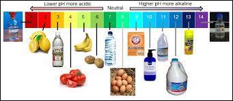 L'échelle de pH est une échelle d'usage courant en chimie permettant de connaître l'acidité d'une substance. Que veut dire l'acronyme pH ?