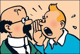 Qui a créé  Les Aventures de Tintin  ?
