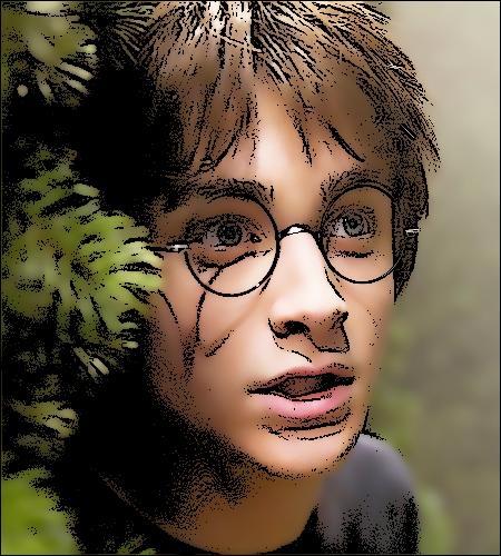 Quel cadeau Harry reçoit-il pour ses 17 ans, comme l'exige la tradition ?