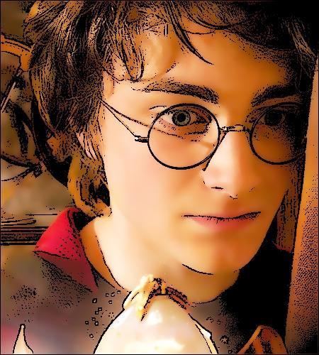 50 questions sur Harry Potter