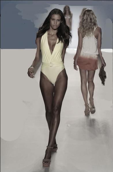 """Qui chantait """"J'aime regarder les filles qui marchent sur la plage"""" ?"""