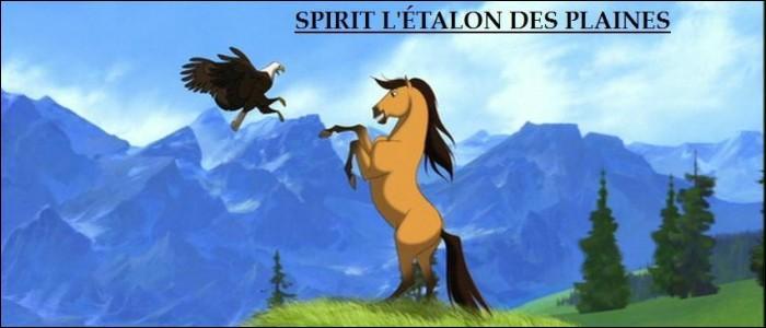 Quelle est la particularité de Spirit ?