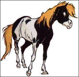 Ce poney s'appelle Petit Tonnerre.