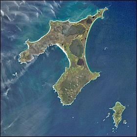 En 1835, 1 600 morioris peuplent les îles Chatham, en Nouvelle-Zélande. Ce peuple polynésien est alors envahi par 900 maoris. Combien reste t-il de morioris en 1860 ?