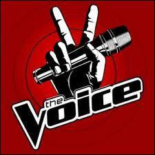 """Il s'est fait connaître lors d'un télé-crochet intitulé """"The Voice"""". A quelle saison a-t-il participé ?"""