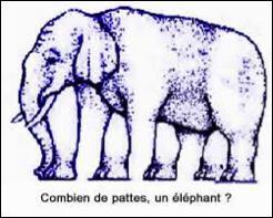 Combien de pieds possède cet éléphant ?