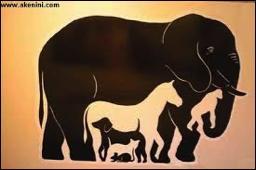 Combien d'animaux sont présents dans cette image ?