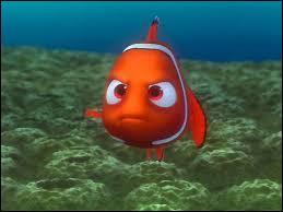 Nemo est handicapé. Laquelle de ses nageoires est atrophiée ?