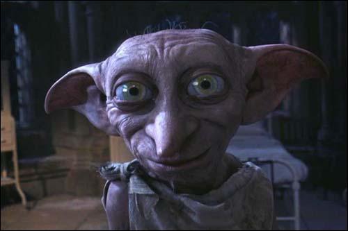 Dans le livre, on décrit les yeux de Dobby gros comme :