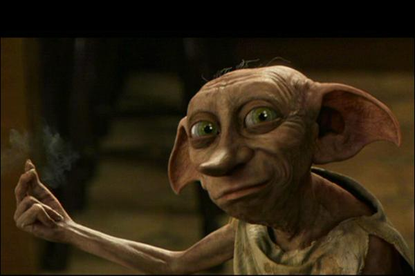 Que n'a pas fait Dobby pour empêcher Harry d'aller à Poudlard ?