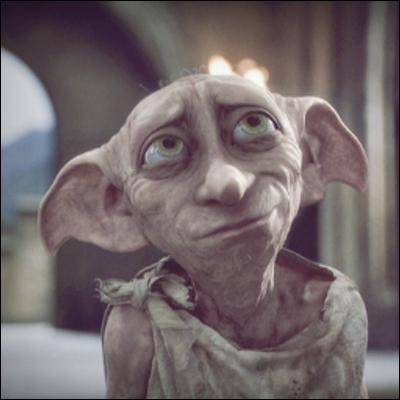 Dans le livre, Dobby a aidé deux fois Harry. Mais dans le film, qui le fait à sa place ?