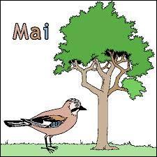 """En avril, ne te découvre pas d'un fil, en mai, fais ce qu'il te plaît ! Comment dit-on """"mai"""" en Anglais ?"""