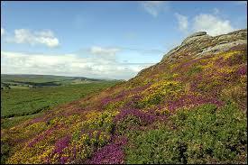 Le parc national de Dartmoor se situe au Royaume-Uni, mais plus précisément :
