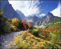 Le parc national des Hautes-Tatras se situe en :