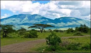 Restons sur le continent africain avec le parc national du Serengeti. Pour y faire un safari, vous devrez vous rendre :