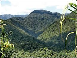 Le parc national Braulio Carrilo nous offre un paysage de montagnes couvertes d'une épaisse forêt tropicale. Il se situe en Amérique centrale, et plus précisément :