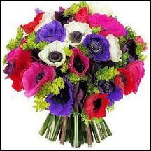 Pour cette dernière question, je vous offre un bouquet ...