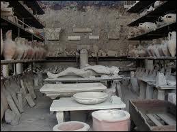 La culture de la vigne était permise par la grande fertilité du sol à Pompéi.