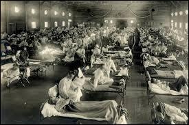 En comparaison avec le nombre de morts de la Première guerre mondiale, on peut dire que la grippe espagnole a fait :