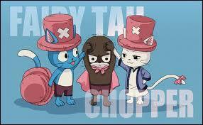 Quand nos trois Exceeds se déguisent ! Ils ont choisi une mascotte d'un autre manga, j'ai nommé...