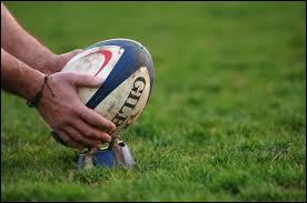 Le rugby est le sport principal du Brésil.