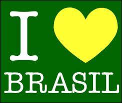 De quelles couleurs est le drapeau du Brésil ?